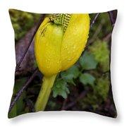 Emerging Throw Pillow