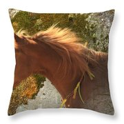 Emerging Free Throw Pillow