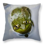 Emerging Green Throw Pillow by Christina Rollo