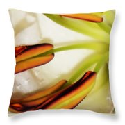 Emerging In Color Throw Pillow