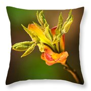 Emerging Leaves Throw Pillow