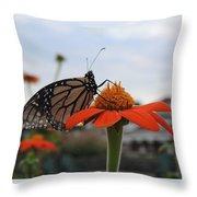 Emerging Monarch Throw Pillow