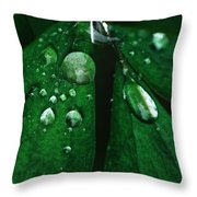 Emerald Rain Throw Pillow