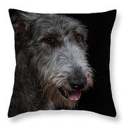 Irish Wolfhound II Throw Pillow