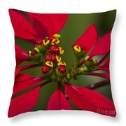 Emmets Home Throw Pillow