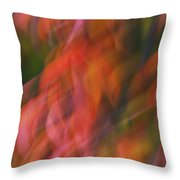 Emotion In Color Throw Pillow