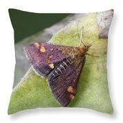 Emperor Moth Throw Pillow
