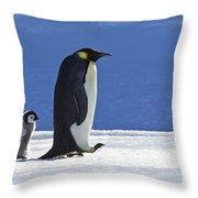 Emperor Penguin And Chick Throw Pillow
