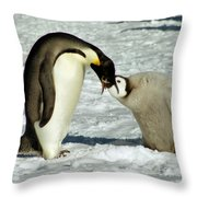 Emperor Penguin Chick Feeding Throw Pillow