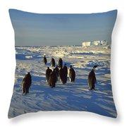 Emperor Penguin Group Walking On Ice Throw Pillow