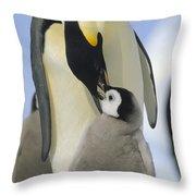 Emperor Penguin Parent Feeding Chick Throw Pillow