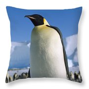 Emperor Penguin Portrait Antarctica Throw Pillow