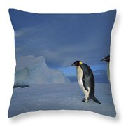 Emperor Penguins At Midnight Antarctica Throw Pillow
