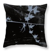 Emphasis From The Series The Elements And Principles Of Art Throw Pillow