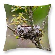 Empty Nest Throw Pillow