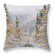 Empty Road Passing Through A Forest Throw Pillow