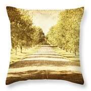Empty Road Throw Pillow