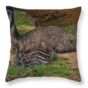 Emu And Chicks Throw Pillow