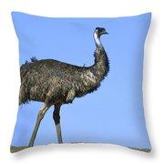 Emu Portrait Sturt National Park Throw Pillow