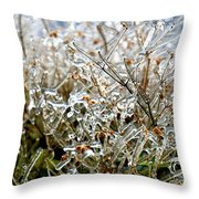 Encased In Ice Throw Pillow