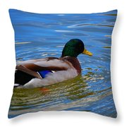 Enchanted By Jrr Throw Pillow