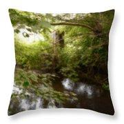 Enchanted Castle Throw Pillow