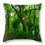 Enchanted Green Path Throw Pillow