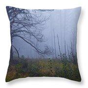 Enchanted Mist - Casper Mountain - Casper Wyoming Throw Pillow