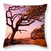Enchanted Park Bench Throw Pillow