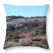 Enchanted Rock Park Throw Pillow