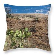Enchanted Space Throw Pillow