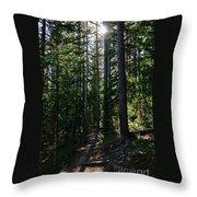 Enchanted Trail Throw Pillow