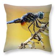 Enchanting Dragonfly Throw Pillow