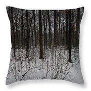 Enclave Throw Pillow