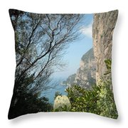 Enclave Of Excellence Throw Pillow