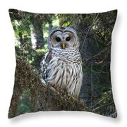 Encounter With An Owl Throw Pillow by Heike Ward