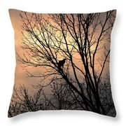 End Of The Day  Red Tailed Hawk Throw Pillow