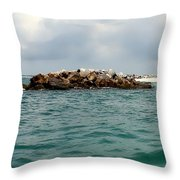 End Of The Jetty Throw Pillow