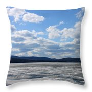 End Of Winter 2011 Throw Pillow