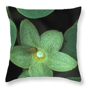 Endangered Flora Throw Pillow