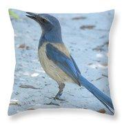 Endangered Scrub-jay Throw Pillow
