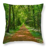 Endless Trail Into The Forest Throw Pillow
