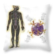 Energy Meridians Of The Human Body Throw Pillow