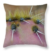 Engelmanns Prickly Pear Cactus Throw Pillow