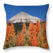 2d10688-engineer Mountain In Fall  Throw Pillow