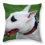 English Bull Terrier Throw Pillow