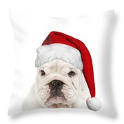 English Bulldog In Christmas Hat Throw Pillow