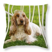 English Cocker Spaniel Throw Pillow