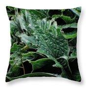 English Country Garden - Series V Throw Pillow