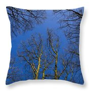 English Forest Trees Throw Pillow